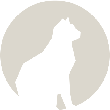 MAUHAUS cat icon